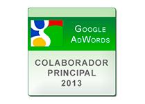 Google Adwords Top Contributor